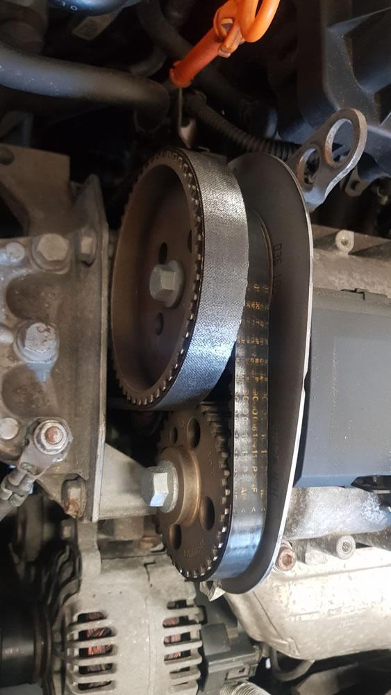 VW Polo 1.4 16v BGGB engine showing cambelt.